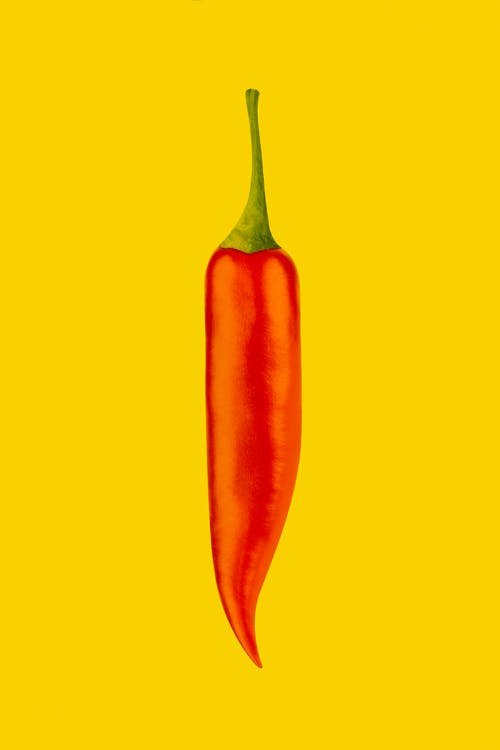 Painted long spicy ripe aromatic red chili pepper with green pedicel and savory taste placed on bright clear yellow surface