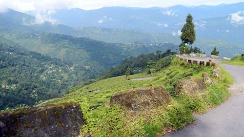 Imagine de stoc gratuită din drumul montan