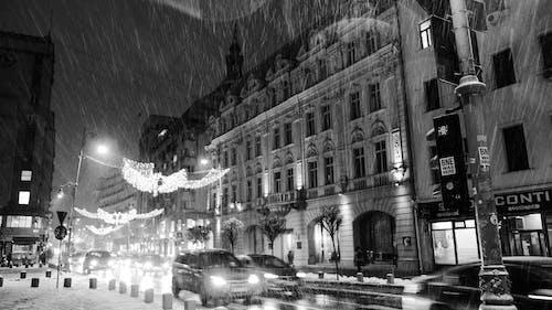 Free stock photo of heavy snowfall