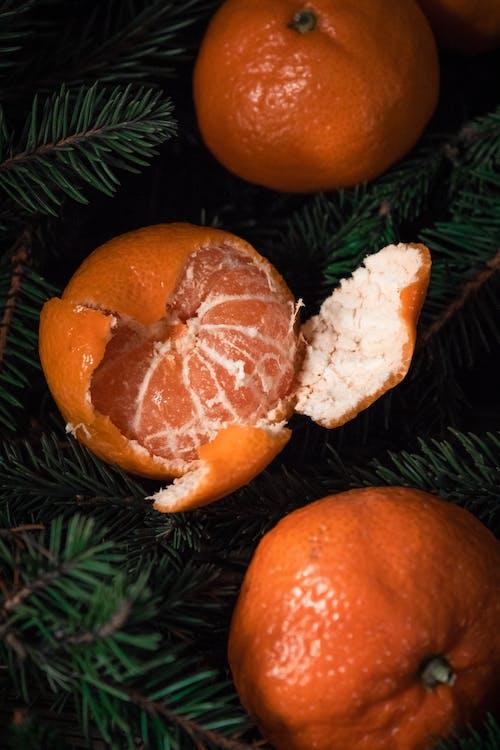Fruta Naranja En Pino Verde