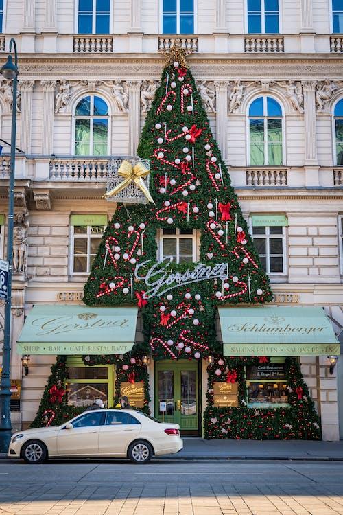Fotos de stock gratuitas de acción, al aire libre, ambiente navideño