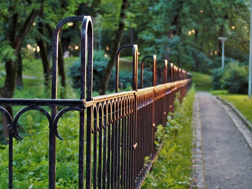 คลังภาพถ่ายฟรี ของ กั้นรั้ว, ความชัดลึก, ต้นไม้, ทางเท้า