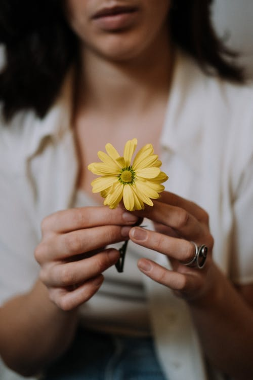 Crop emotionless brunette in white blouse touching gentle yellow chrysanthemum flowers in light room