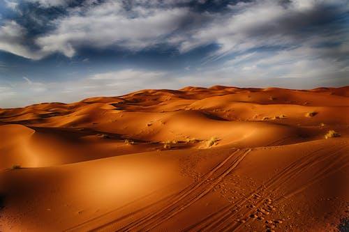 Sand Dunes Under a Cloudy Sky