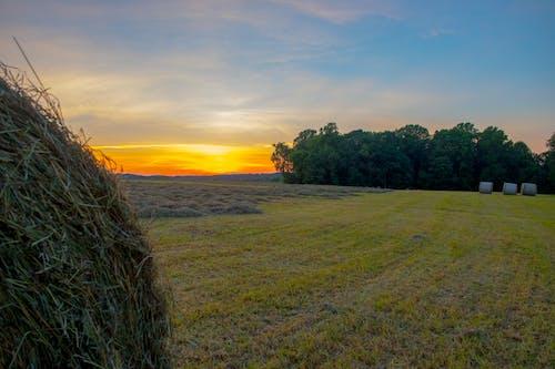 Free stock photo of Maryland Farm, sunset