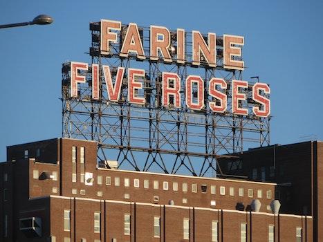 Farine Five Rose Singage