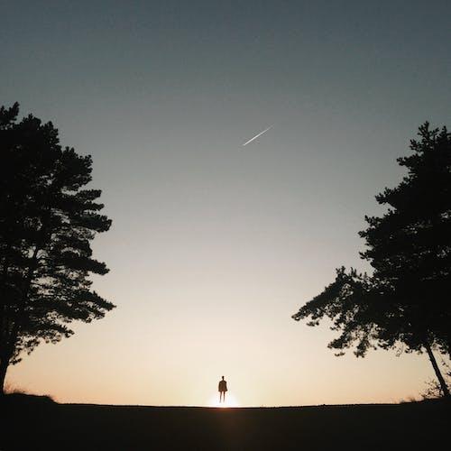 Foto profissional grátis de anônimo, ao ar livre, apreciar