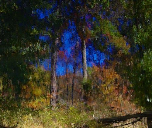 Free stock photo of light dance, light reflection, still waters