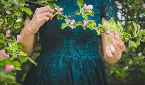 Foto d'estoc gratuïta de arbre, creixement, dona, flor