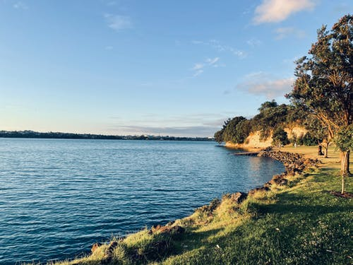 Free stock photo of auckland beach, bay, beach