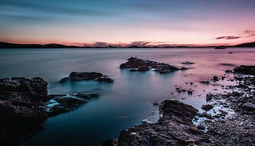 Бесплатное стоковое фото с вода, дикая природа, живописный, залив