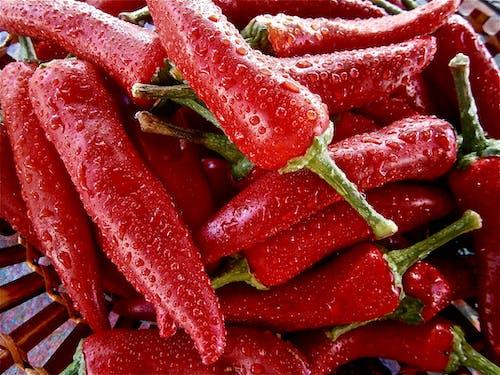 濕, 紅色, 辣椒 的 免費圖庫相片