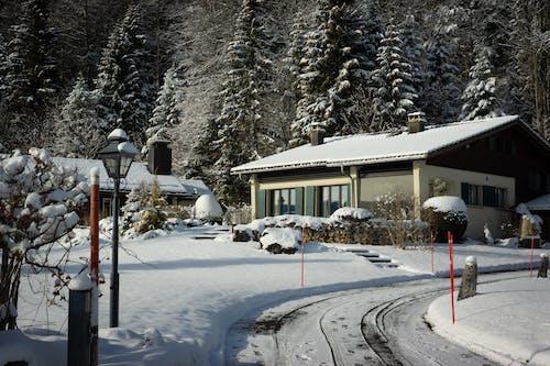 Free stock photo of alpine, bungalow, cabin