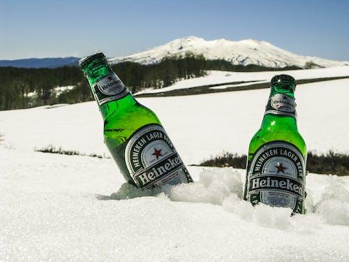 Foto d'estoc gratuïta de ampolles, beguda, cervesa, colors freds