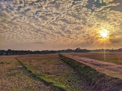 Free stock photo of beautiful sky, bright sky, evening sun