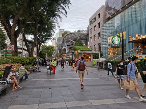 Free stock photo of orchard road