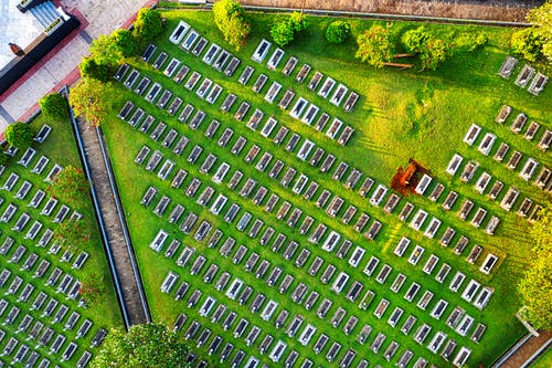 Top view abundance of tombstones located on grassy terrain with green trees located in national main heroes cemetery in Kalibata