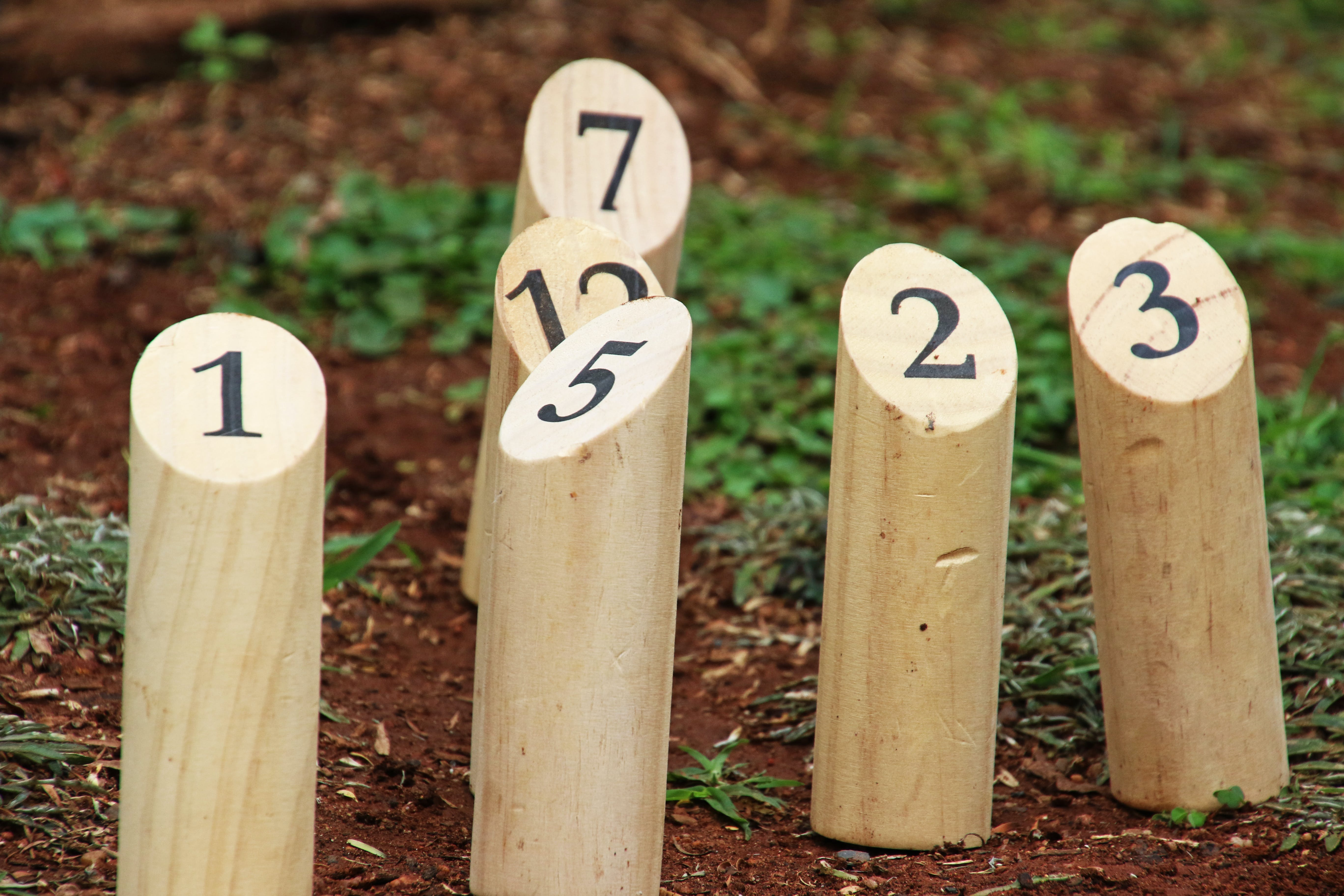 Free stock photo of wood, garden, grass, numbers