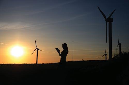 人, 可持續性, 女人, 日出 的 免费素材照片
