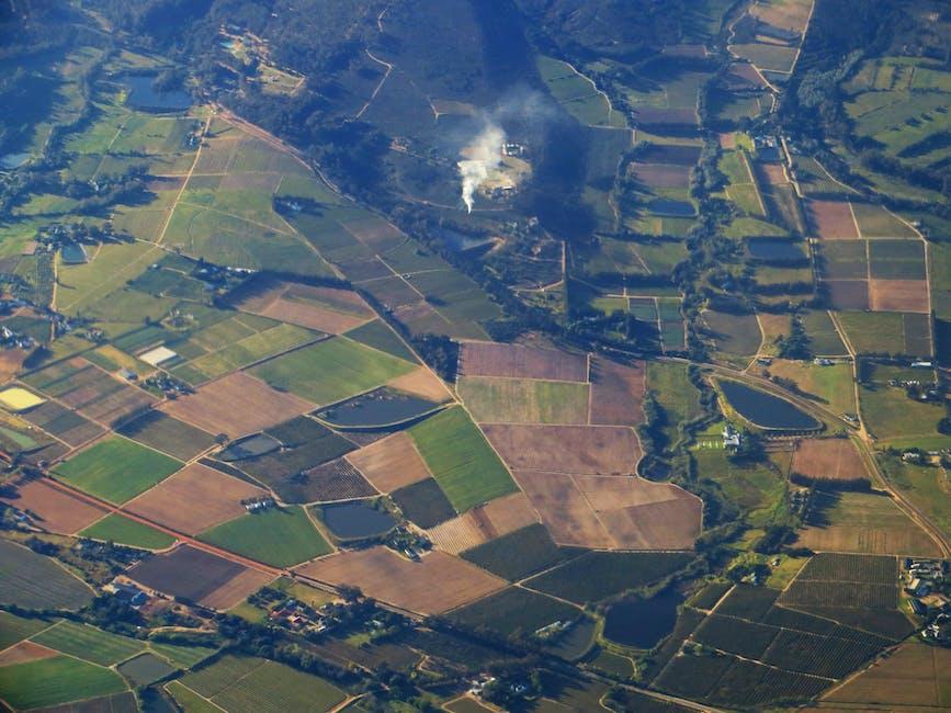 Bird's Eye View Of Farmland