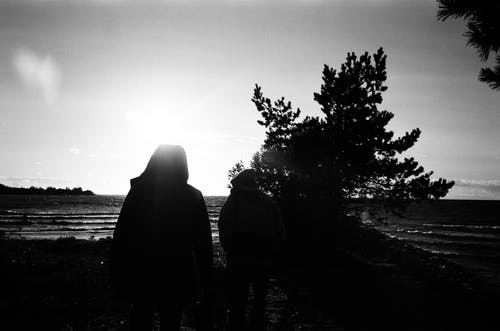 Silhouette of 2 Person Standing Near Tree