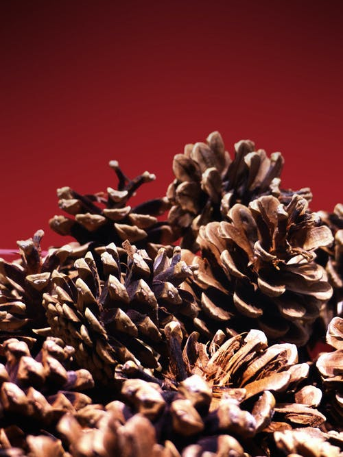 Decoration of stack of fir cones against red background