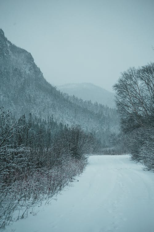 Snowy road leading to mountains in winter time