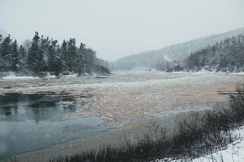 Frozen mountain river in winter