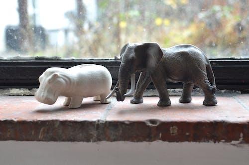 Foto stok gratis ambang jendela, arca, Asia
