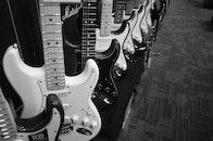 music, musician, rock