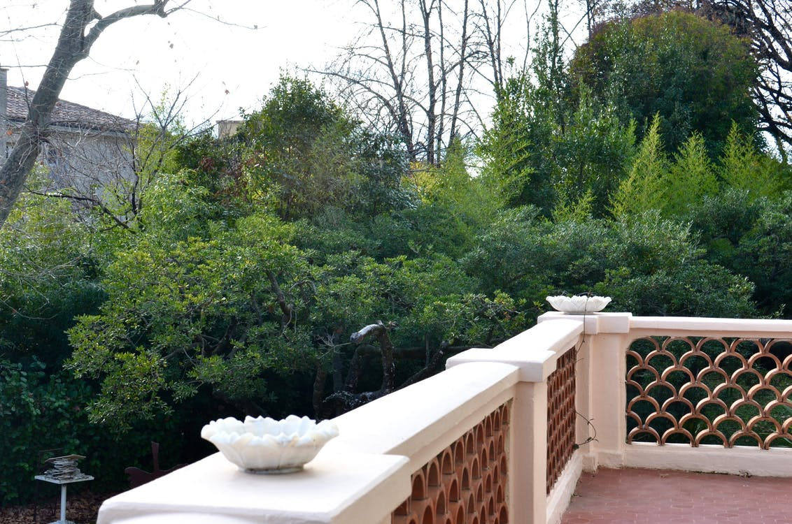 Picturesque view of tall green lush trees growing in yard from open white stone balcony in city