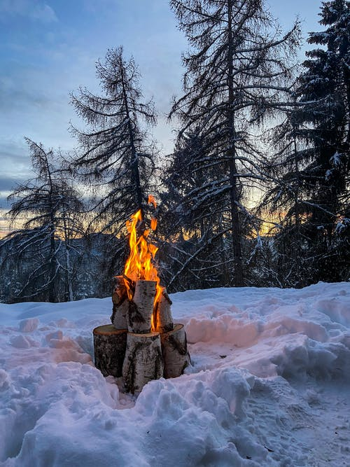 Burning bonfire in winter forest in twilight