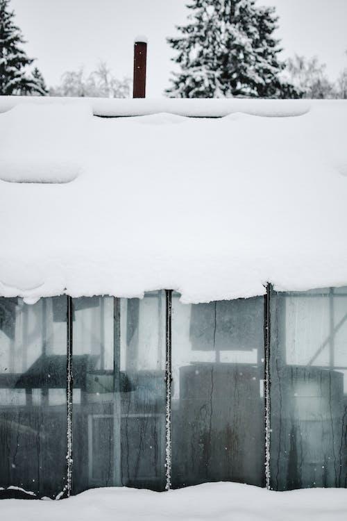 chimneys in winter