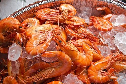 健康, 刺龙虾, 可口 的 免费素材图片