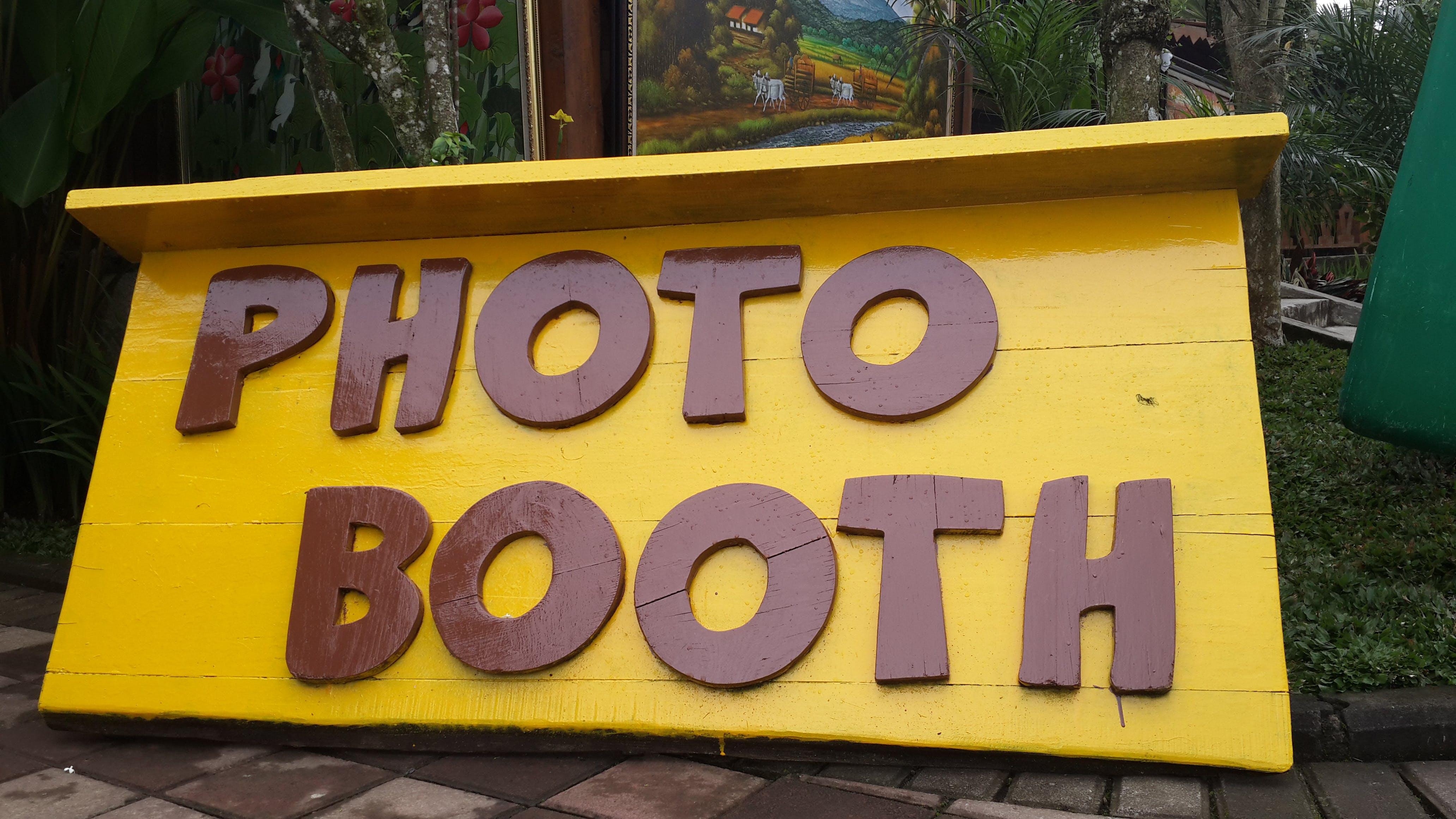 Free stock photo of photo
