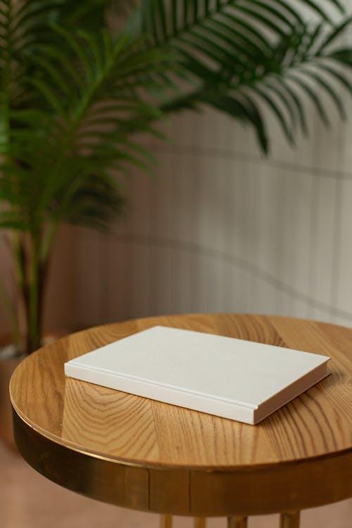 Gratis lagerfoto af bestyrelse, bog, bord