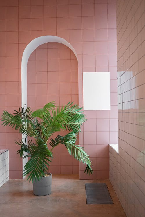 Interior of light room with pink walls and empty placard