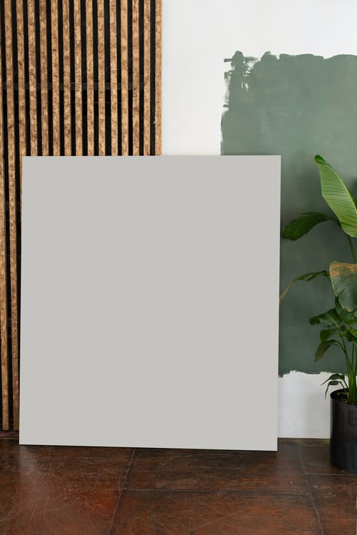 Interior of light room with white board on floor near green potted plant and painting