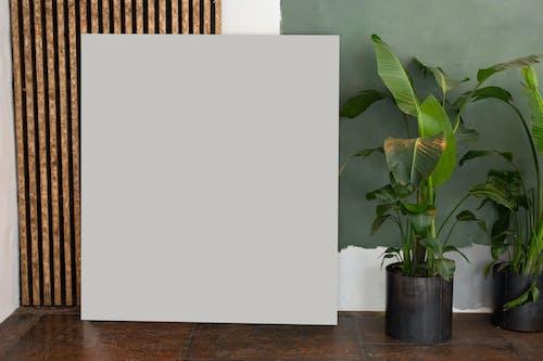Immagine gratuita di appartamento, arredamento, arte