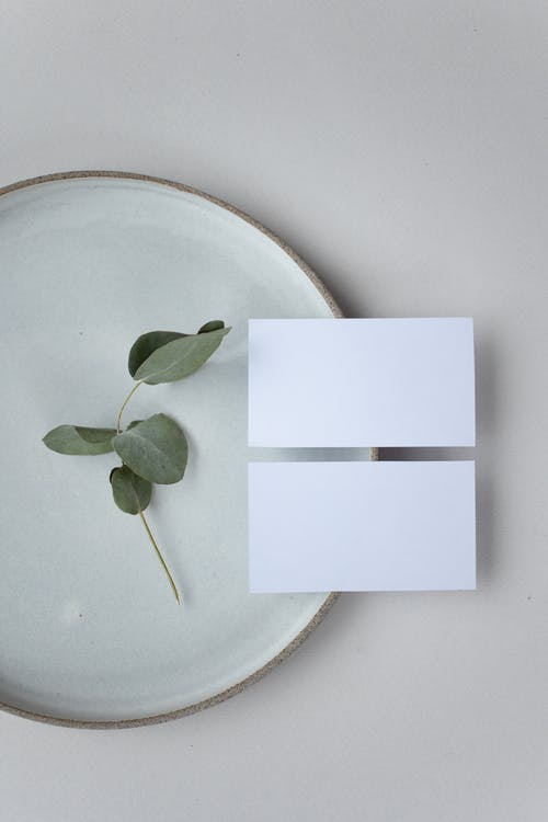Top view of white blank name tags on round plate with small green plant on white background in light room