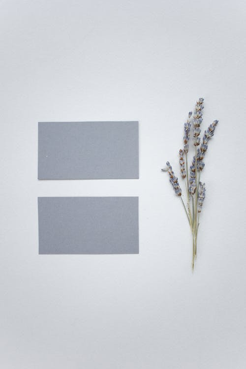 Top view of fray mock up business cards placed on white background with twig of flower in light modern studio