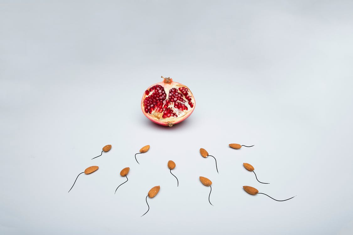 Fruta Redonda Roja Y Marrón
