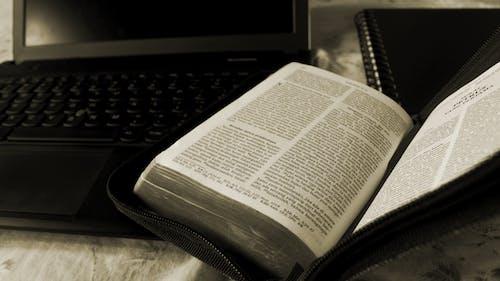 Δωρεάν στοκ φωτογραφιών με Αγία Γραφή, ανάγνωση, χριστιανισμός