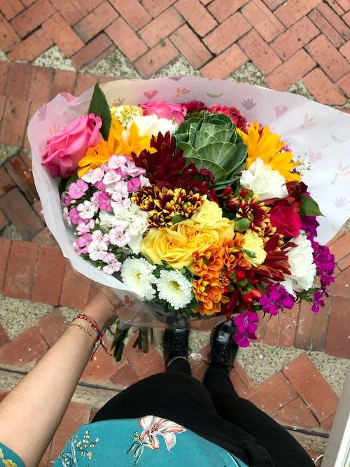 Photos gratuites de amour, bouquet, briques