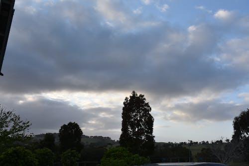 Free stock photo of dawn, sky