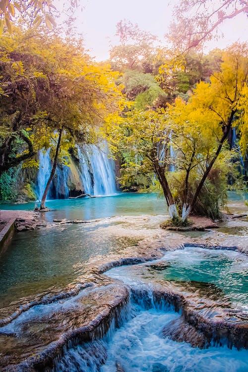 Kostnadsfri bild av bäck, flod, landskap