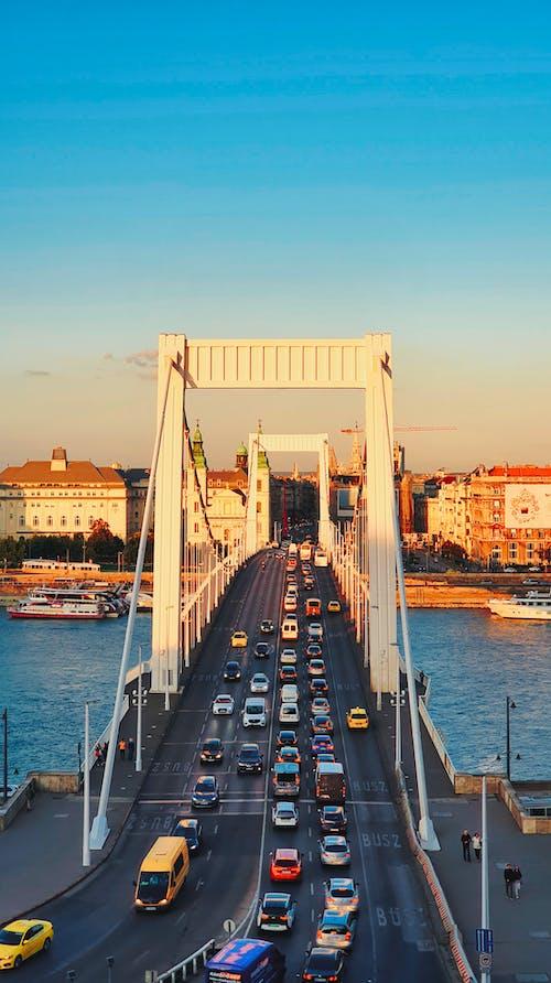 Gratis arkivbilde med arkitektur, bro, by