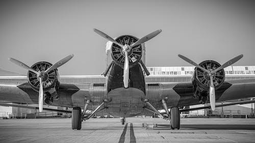 Základová fotografie zdarma na téma bojovník, černobílá, dopravní systém, křídla