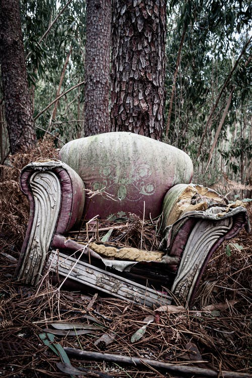 An Abandoned Couch in the Forest