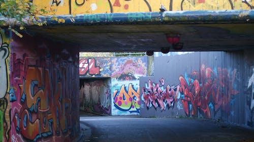 Free stock photo of city, color splash, graffiti